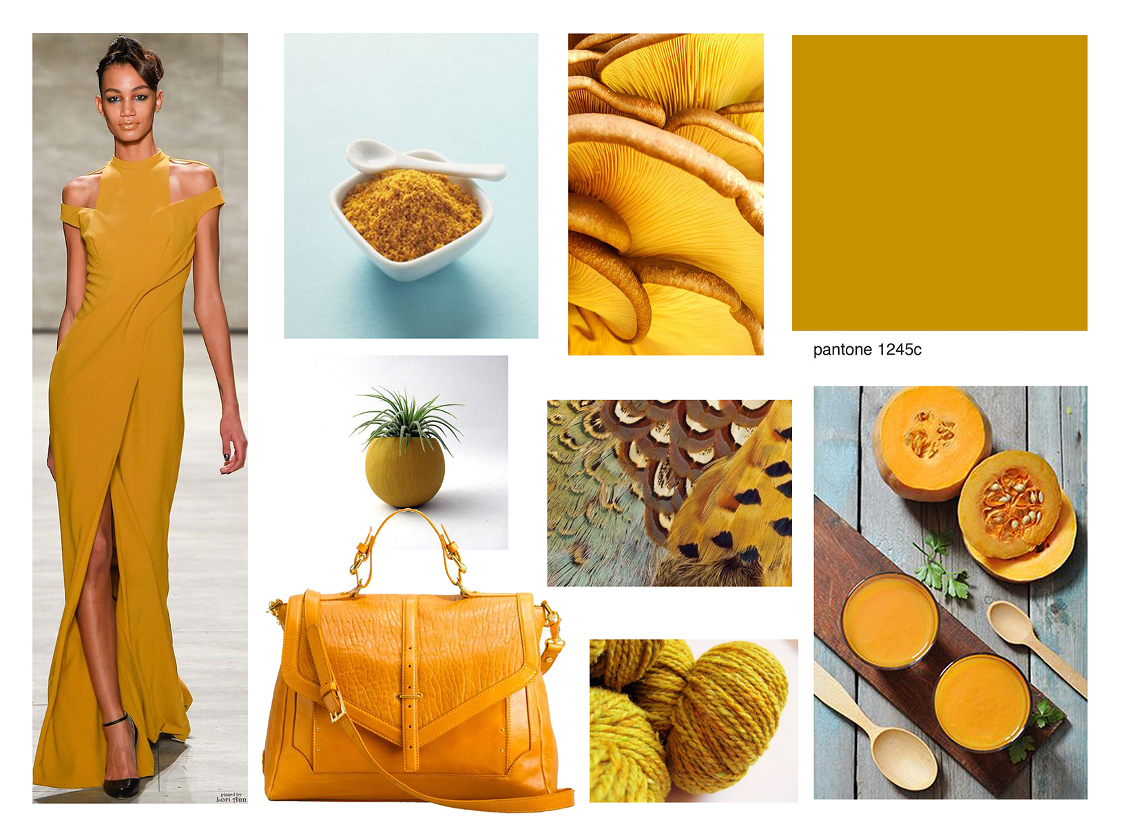 SPICY MUSTARD, PANTONE COLOR OF THE YEAR