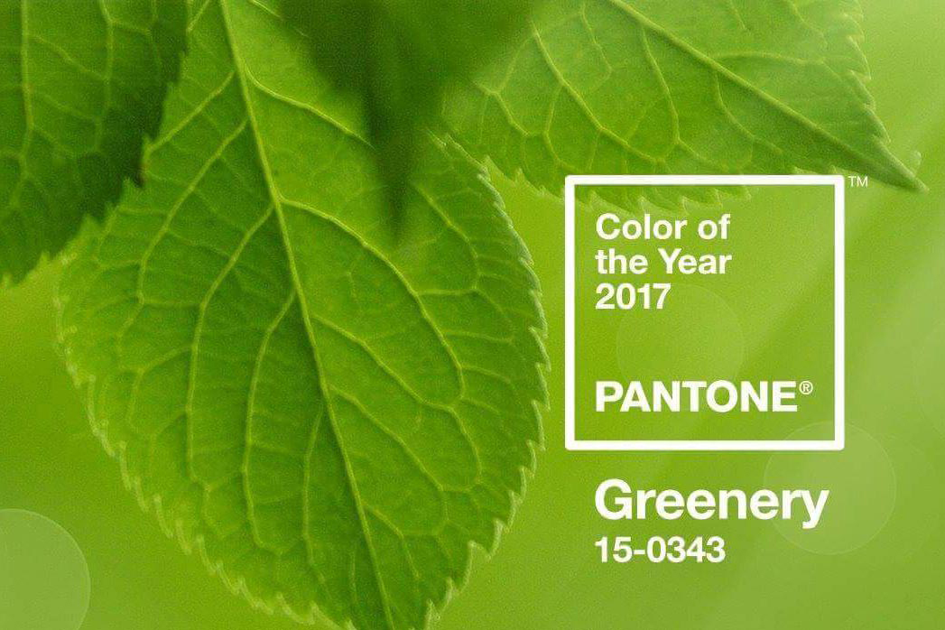 Pantone Greenery, color of the year